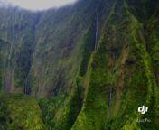 Kauai from letest xxxx sane leion